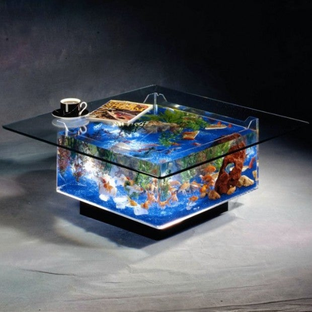 fish tank coffee table swagger magazine