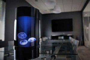 Jellyfish-Cylinder-Nano-Aquarium-2