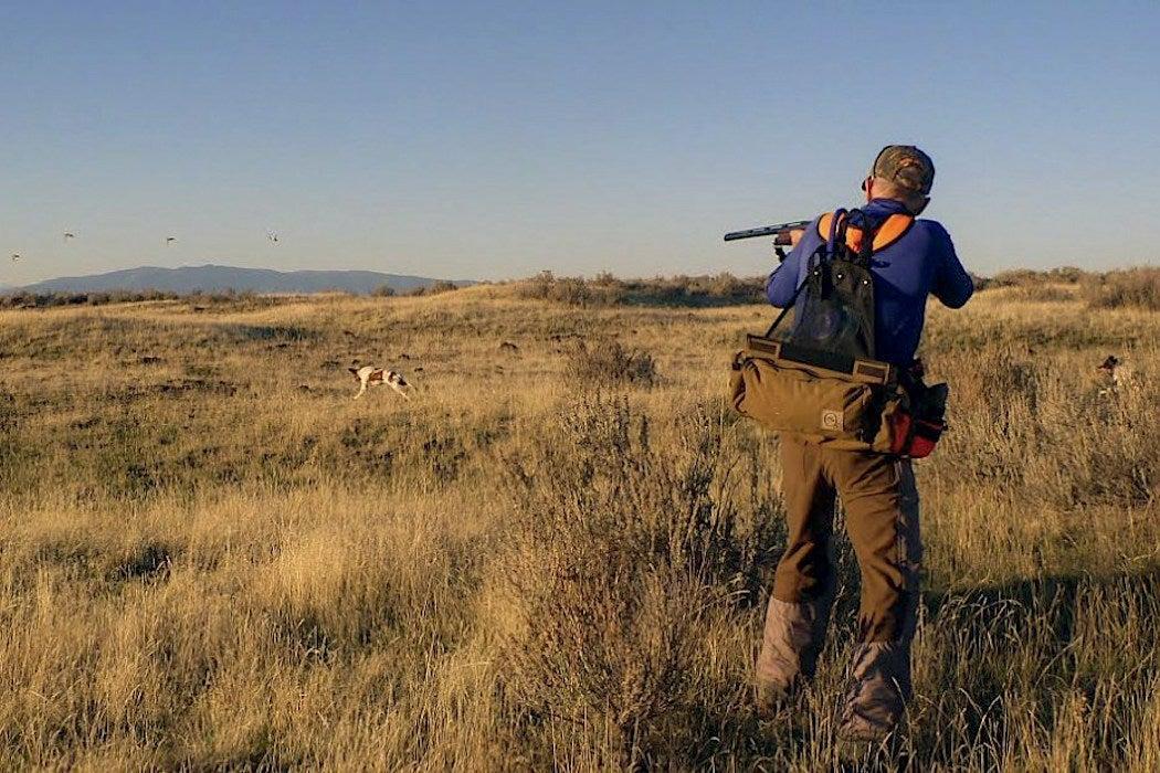 Sport of Hunting, Rifles