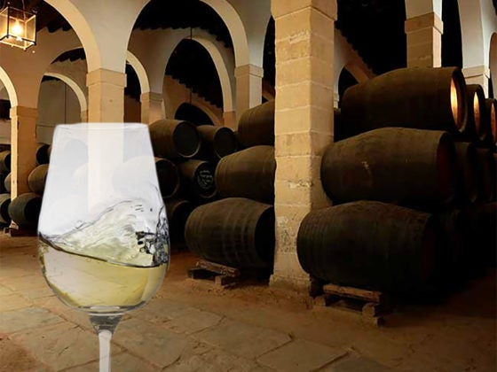 Sherry Wines from Spain