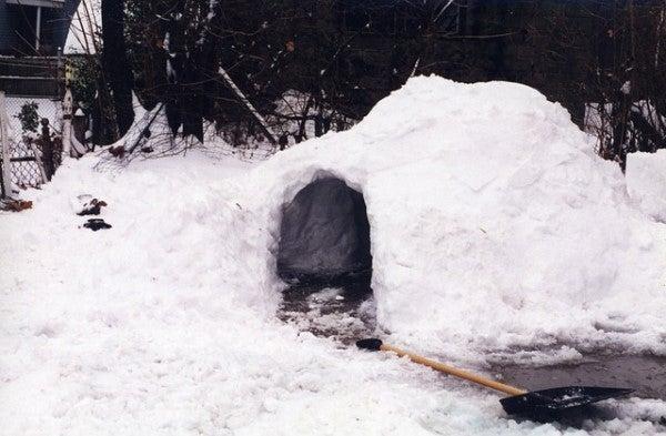 Beerman: Snow Fort